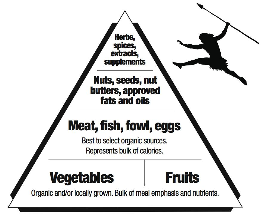 usda food pyramid 2011. usda food pyramid 2011.